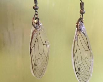 Cicada wing dangle earrings