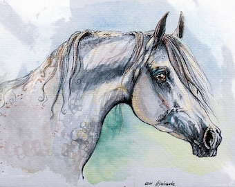 Arabian horse, equine art, equestrian, cheval, horse portrait, original pen and watercolor painting