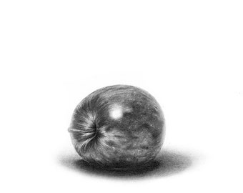 APPLE PRINT - still life art, still life painting, still life print, apple art, apple drawing, bathroom decor, still life drawing, fruit art