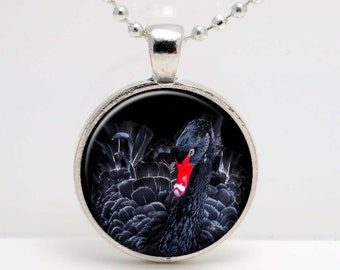 Black Swan  Photo Altered Art  Glass Photo Pendant or Key Chain- 30 mm round- Chain Included- Made to Order