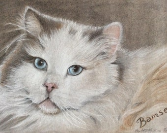 Animal portraits from your photo: Size A5