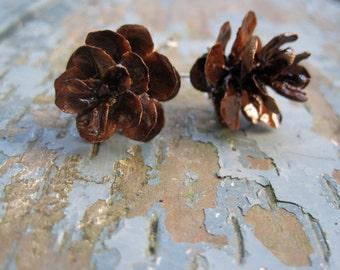 Rustic Natural Brown Color Hemlock Evergreen Eco-Friendly Woodland Pine Cone Drop Earrings with Regular Hooks