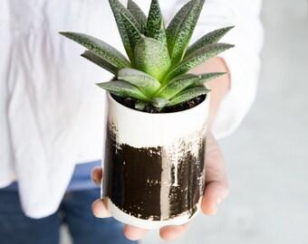 Ceramic Planter, Small Vase,Black And White Planter, Ceramic Succulent Planter, Modern Planter, Ceramic Pottery Gift