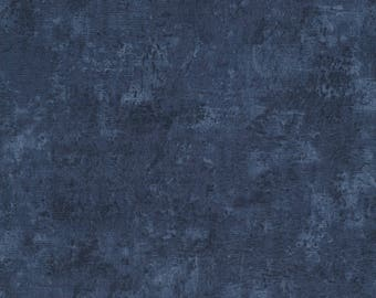 Timeless Treasures - Inspired Journey by Wing and A Prayer - Blender - Blue - Fabric by the Yard C4532-BLU