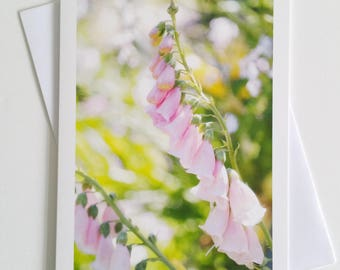 Foxgloves - fine art photography greeting card