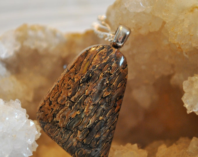 Brown Fossilized Dinosaur Bone Necklace pendant on Sterling Silver chain simple, boho, minimalist