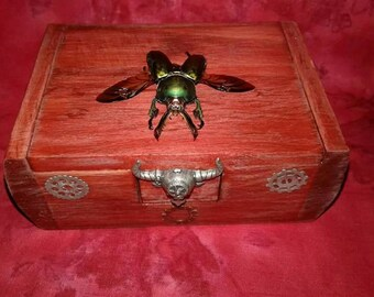 Jewelry box/stash box- real insect/beetle entomology oddities taxidermy collectibles