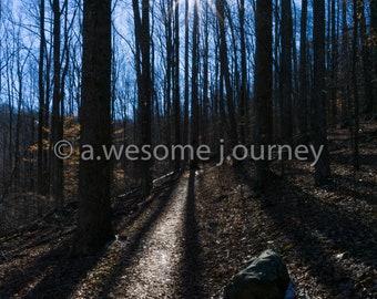 Chasing the Sun - Shenandoah National Park - Framed Photography