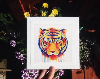 Tiger Art,  Glicee Original Print, tiger print, animal art, gift idea