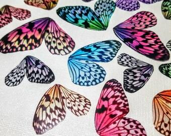 Small, Medium and Large Dragonfly Wings - 8 Random Cutouts