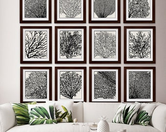 Underwater Sea Coral Collection (Series L10) Set of 10 - Art Prints (Featured in Black / Pale Stone Wash) Nautical Ocean Inspired Art