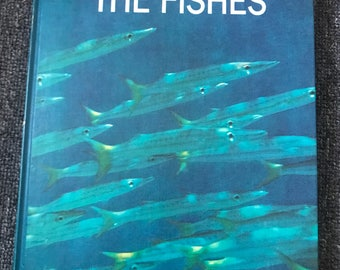 1969 The Fishes LIFE Nature Library Hardcover Book! Sharks! Rays!
