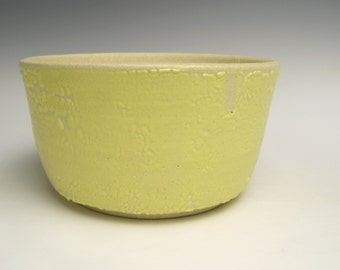 Succulent pot Modern Planter Ceramic Stoneware planter Contemporary Herb planter pot Yellow and white Handmade ceramic planter 6  x 3 scp-3
