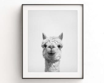 Alpaca print alpaca wall art nursery print alpaca art printable poster nursery decor digital download animal print black and white photo