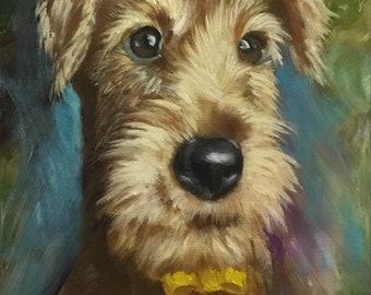 Oil painting, Dog portrait, Schnauzer dog portrait