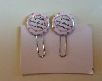 Set of two paper clips bookmark nice ladies poppies