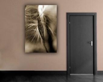 Sepia Milkweed Photography, Sepia Monochromatic Wall Art, Fine Art Nature Milkweed Photograph, Wishing Seed Macro Photo, Vertical Home Decor