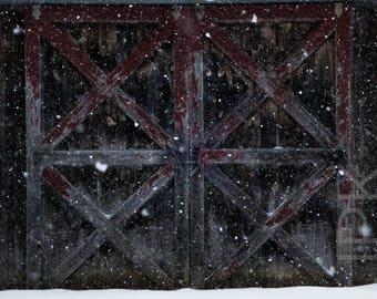 Snowstorm, Western Massachusetts