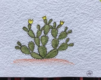 Prickly Pear Watercolor