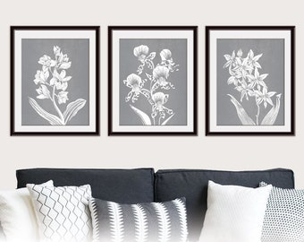 Alluring Orchids (Series B3) Set of 3 - Art Prints (Featured in Flint with White Flowers) Modern Botanical Flower Art Print / Grey