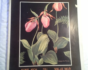 NATURE MAGAZINE  June 1931  Beautiful  Cover  by Marguerite Kumm