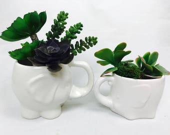 Greenery Decor   Ceramic Succulent Planter   Elephant   Greenery   Succulent Planter   Trunk Up   from my Charleston, SC Studio