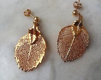 24K Gold Dipped Genuine Aspen Leaf Leaves Dangle Post Earrings Autumn Fall Rustic Woodland Wedding Jewelry Jewellery