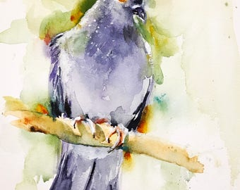 """Original watercolor painting-""""Portrait of a pigeon"""" free shipping (watercolor feather painting bird nature city pigeons cheeky bird)"""