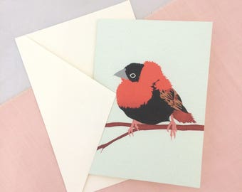 Orange Bishop Card | Bird Card | Bird Greetings Card | Bird Birthday Card | Anniversary Card | Bird Art | Bird Print | Bird Art