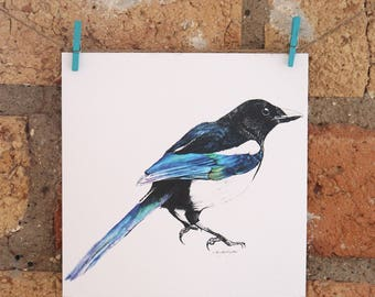 Illustrated Magpie Card