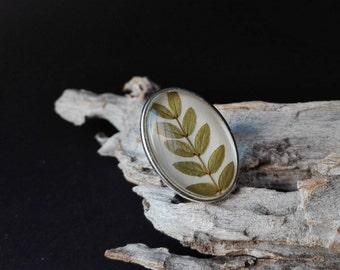 Maxi Oval Ring ACACIA | | Silver tone hypoallergenic, adjustable, with glass Cabochon | | Magic of Nature | | SpiritoDelBosco