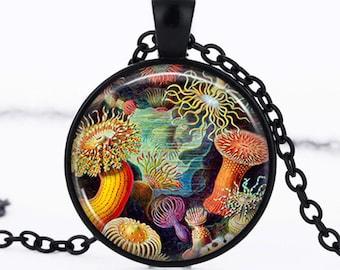 Cabochon pendant of multicolored sea anemones, Sea Anemone photo Black domed Glass Cabochon Necklace chain Pendant - pc28