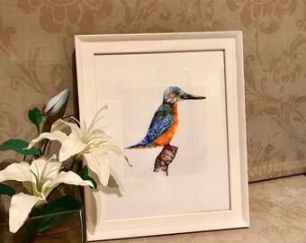 kingfisher art print, bird drawings, art prints, animal art, kingfisher, wildlife drawing, wildife art print