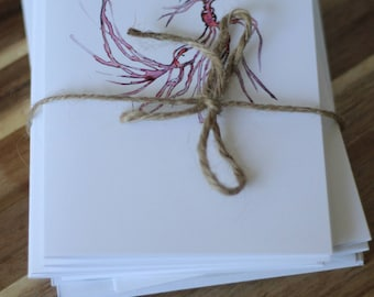 Social Kitchen Stationery: Beet Postcards/Greeting Cards