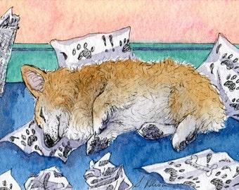 Welsh Corgi dog thinking 8x10 print