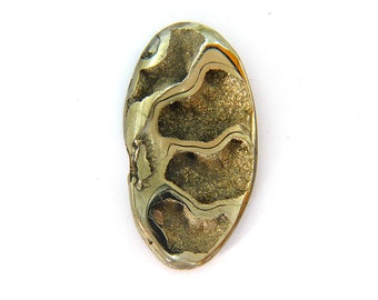 Fossil Ammonite with Nautral Pyrite Druzy Designer Cabochon Gemstone 25.0x46.8x6.7 mm 71.0 carats Free Shipping