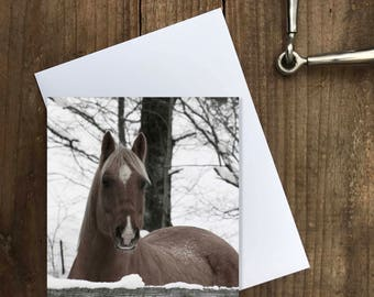 Christmas card | Horse | Equine | Snow | Greeting card | Blank card | Horse Christmas card