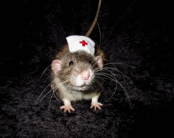 Nurse Rat Hat