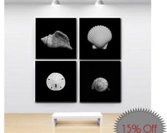 Wall Canvas-Set of 4-Square Canvas-Shell Photography-Canvas Wraps-Coastal Art-Shell Photos-Black & White Photography-Art Collection