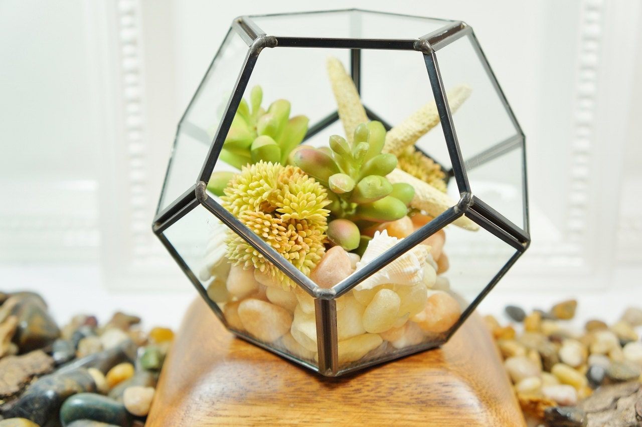 Succulents Artificial Succulent Arrangement In Geometric