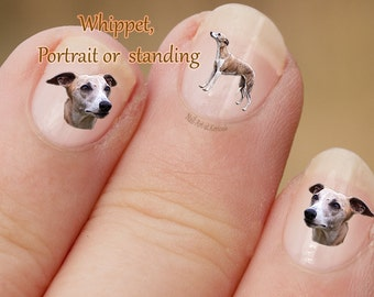 Whippet Nail Art, hond Nail Art Stickers, Nail Stickers, vingernagel Stickers, hound, portret, permanent, stickers, fotografische nail art