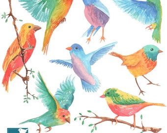 Hand Painted Watercolor Colorful Birds Clipart - card design, invitations, watercolor, paper crafts, hand drawn - INSTANT DOWNLOAD