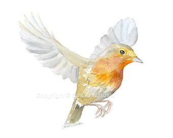 Robin Watercolor Painting - 7 x 5 - Fine Art Giclee Print Reproduction - Bird Painting