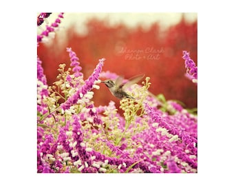 Hummingbird photography. spring art. whimsical photography. dreamy. nursery decor. Red Purple Green Nature Photography. Floral. Flowers
