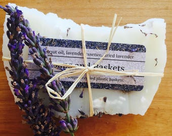 Lavender Soap Hair and Body
