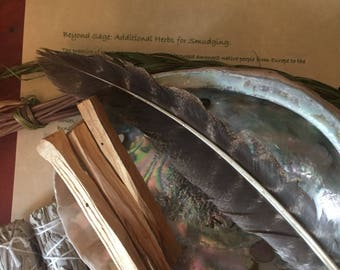Deluxe Smudging Kit - large abalone bowl, sage, cedar, sweetgrass, palo santo, feather & instructions