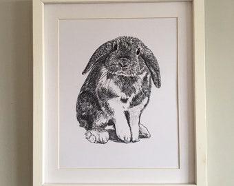 Rabbit Print - Hand illustration in pen & ink