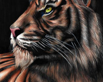 Majestueuze Tiger: Art Print Wall Art Decor