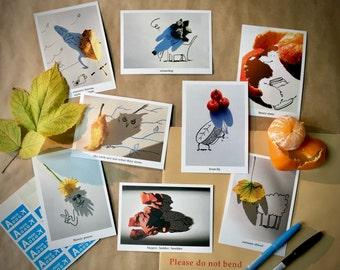 NATURE postcards Set