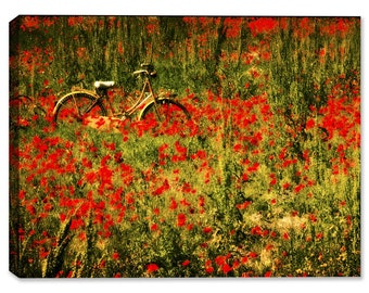 Wet Paint - Poppy Field - Fine Art Canvas Print - Indoor Art or Outdoor Art